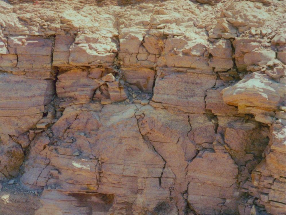 пристройка к дому, глинистые почвы